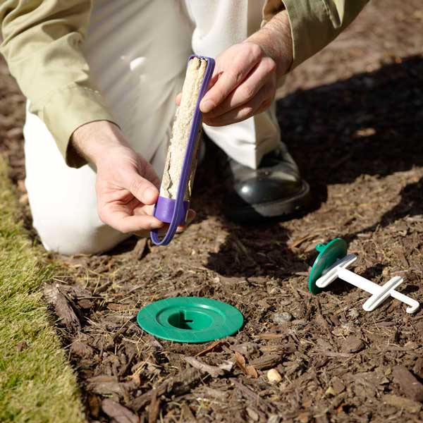 OPC Pest Control - Pests - Pest Inspection
